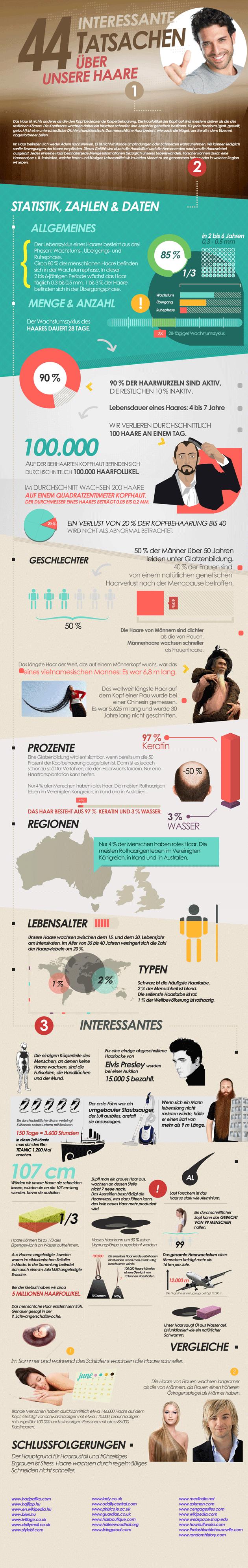 Infografik 44 interessante Tatsachen über unsere Haare